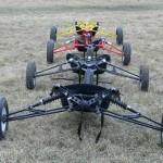Hungarian Buggy 2