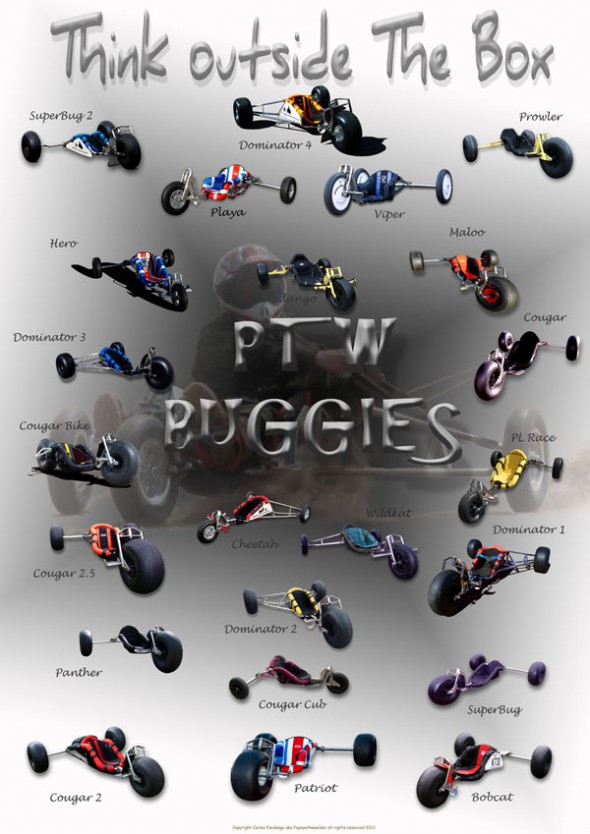 My Buggies 2013 b