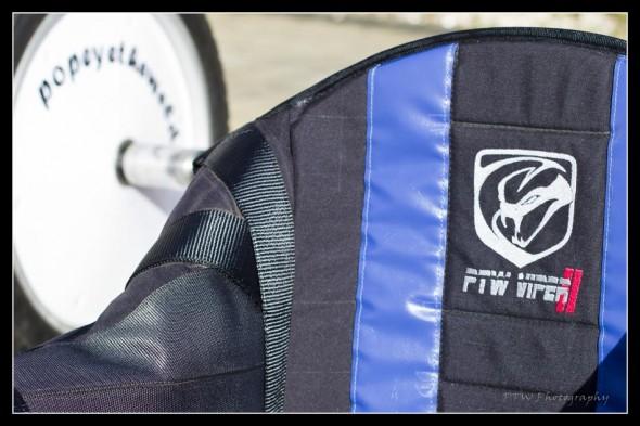PTW Viper 17