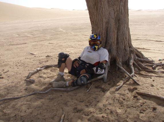 Resting under the Ghaf tree