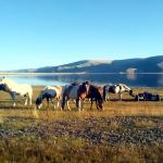 2014.09 Mongolia 004